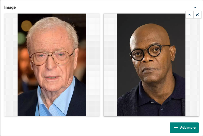 A multi image editor displaying a photo of Michael Caine and Samuel L Jackson